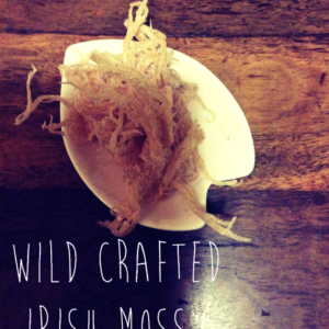 irish moss wild crafted