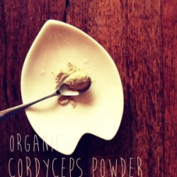 Cordyceps-Powder-300x300