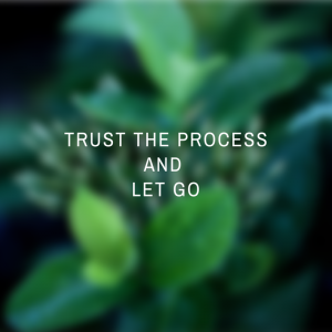 trust the process and let go