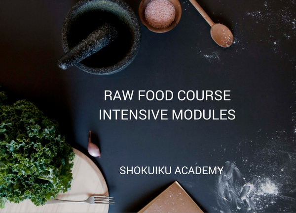 RAW-FOOD-COURSE-INTENSIVE-MODULES-1